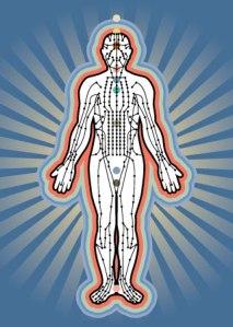 body complex