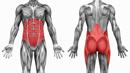 core stability muscles professional athletes texas
